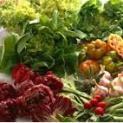 Manger moins de viande et plus de végétaux est bon pour la santé